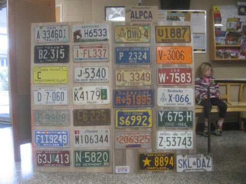 [Assorted license plate run]